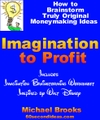 Imagination_to_profit_big_logo